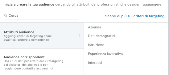 Creare_Pagina_Linkedin_Attributi_audience_ADS
